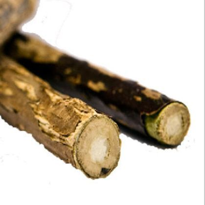 Actinidia silvervine stick